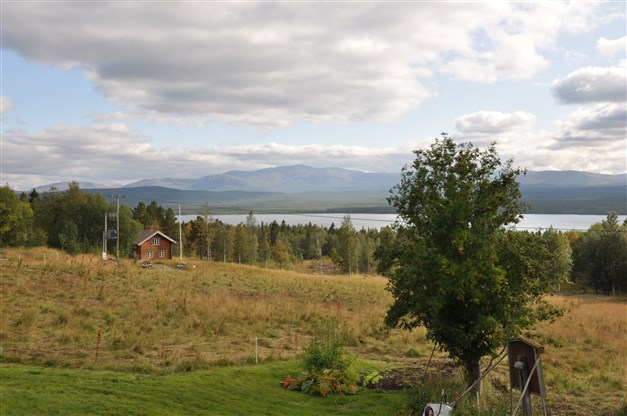 Utsikt söderut