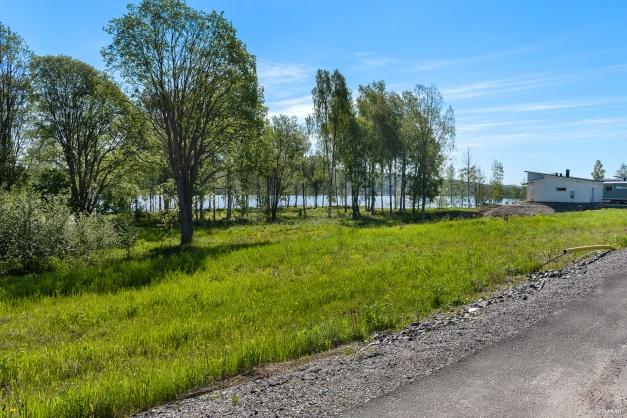 Grönskande tomter i lummig miljö