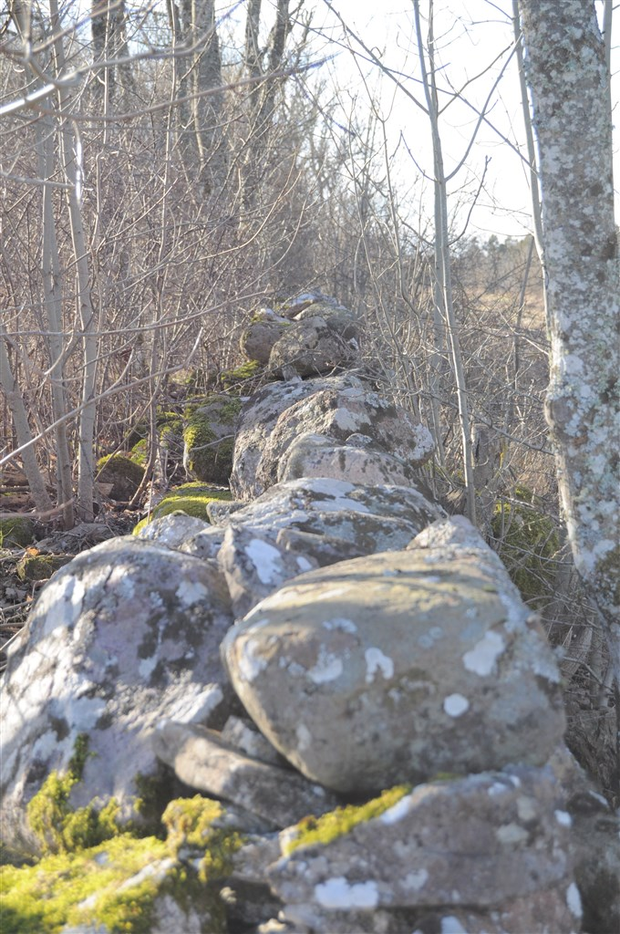 Natur stenmur
