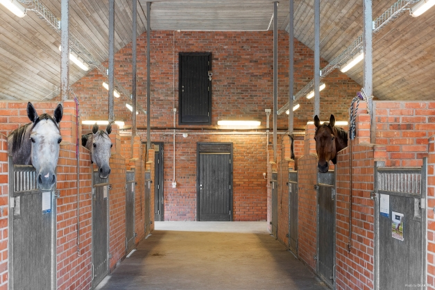 Exklusivt och elegant stall både exteriört som interiört. Stallet inrymmer 10 fullstora boxar.