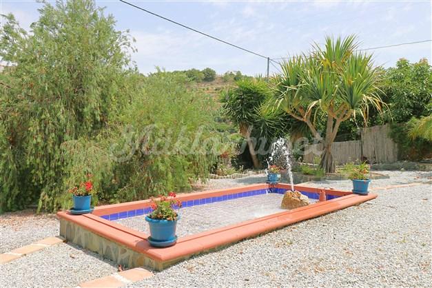 Damm med fontän i trädgården