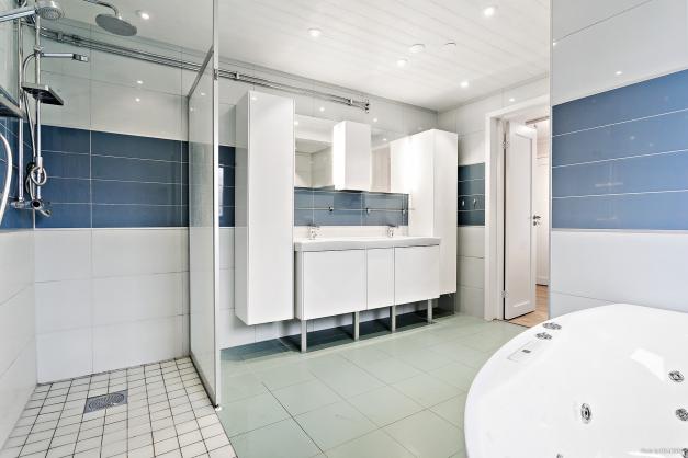 Badrum med jacuzzi och dusch