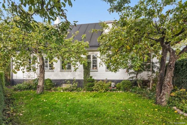En klassisk äppelträdgård mot Rabygatan.