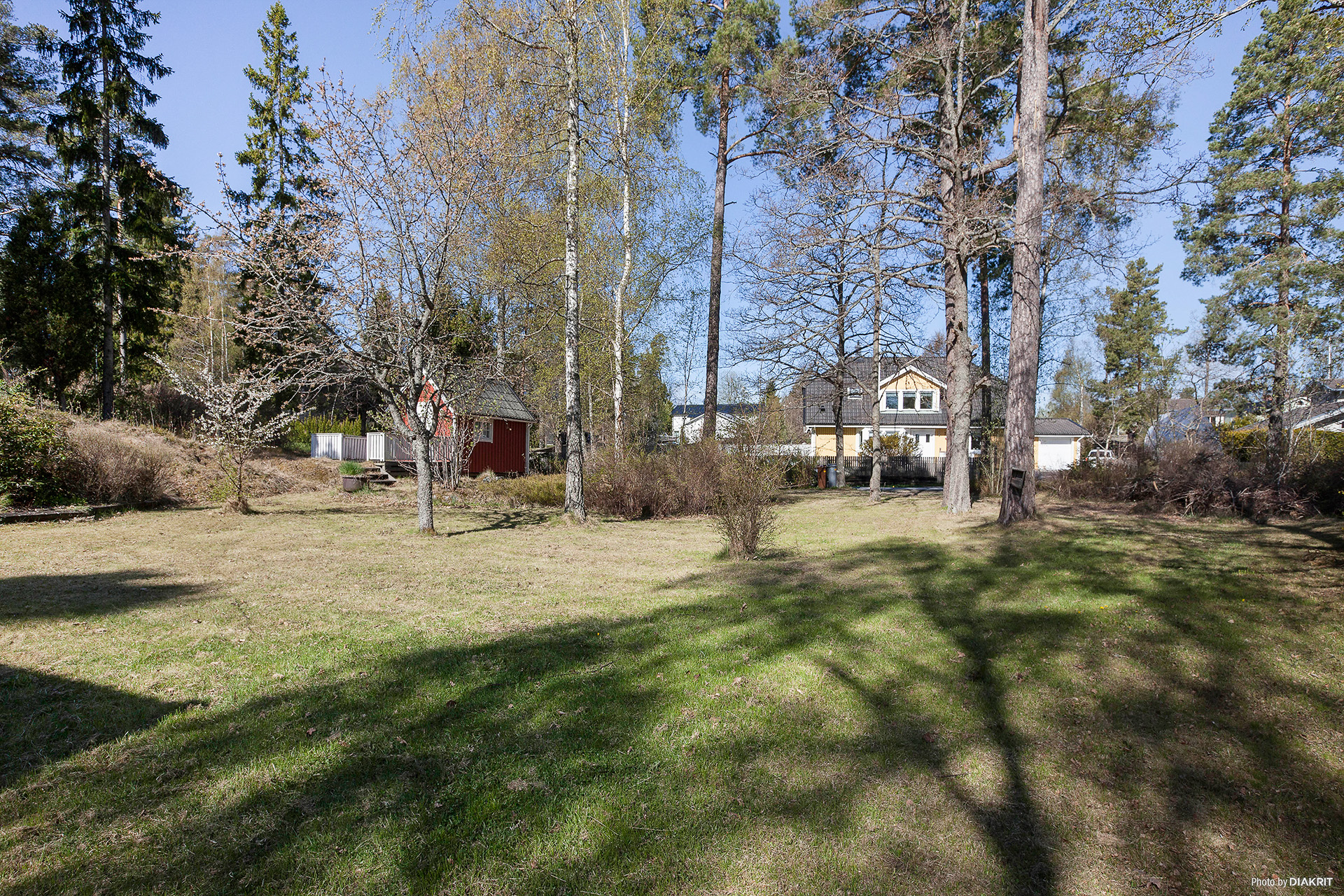 Tomten har gräsmatta och trädgårdsbuskar samt tall och björkträd.