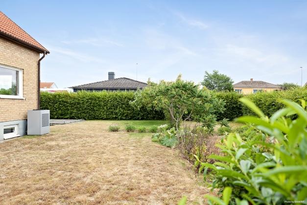 Trädgårdsbild