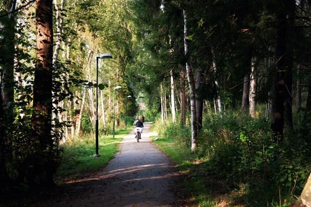 Skogs- och naturnära