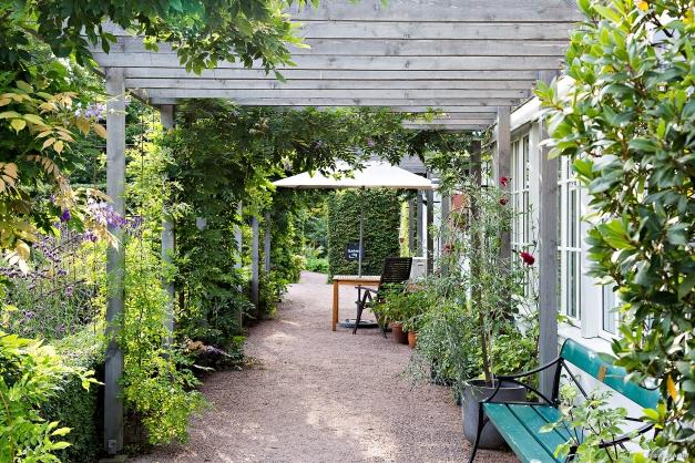 Trädgårdskafeét