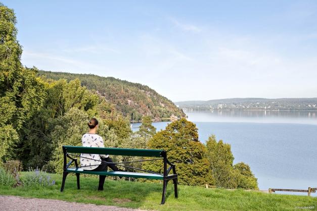 Utsikt över sjön Aspen vid Jonsereds Herrgård