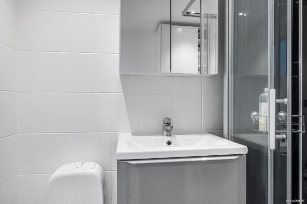 Badrummet är utrustat med wc, handfat med kommod, dusch och tvättmaskin.