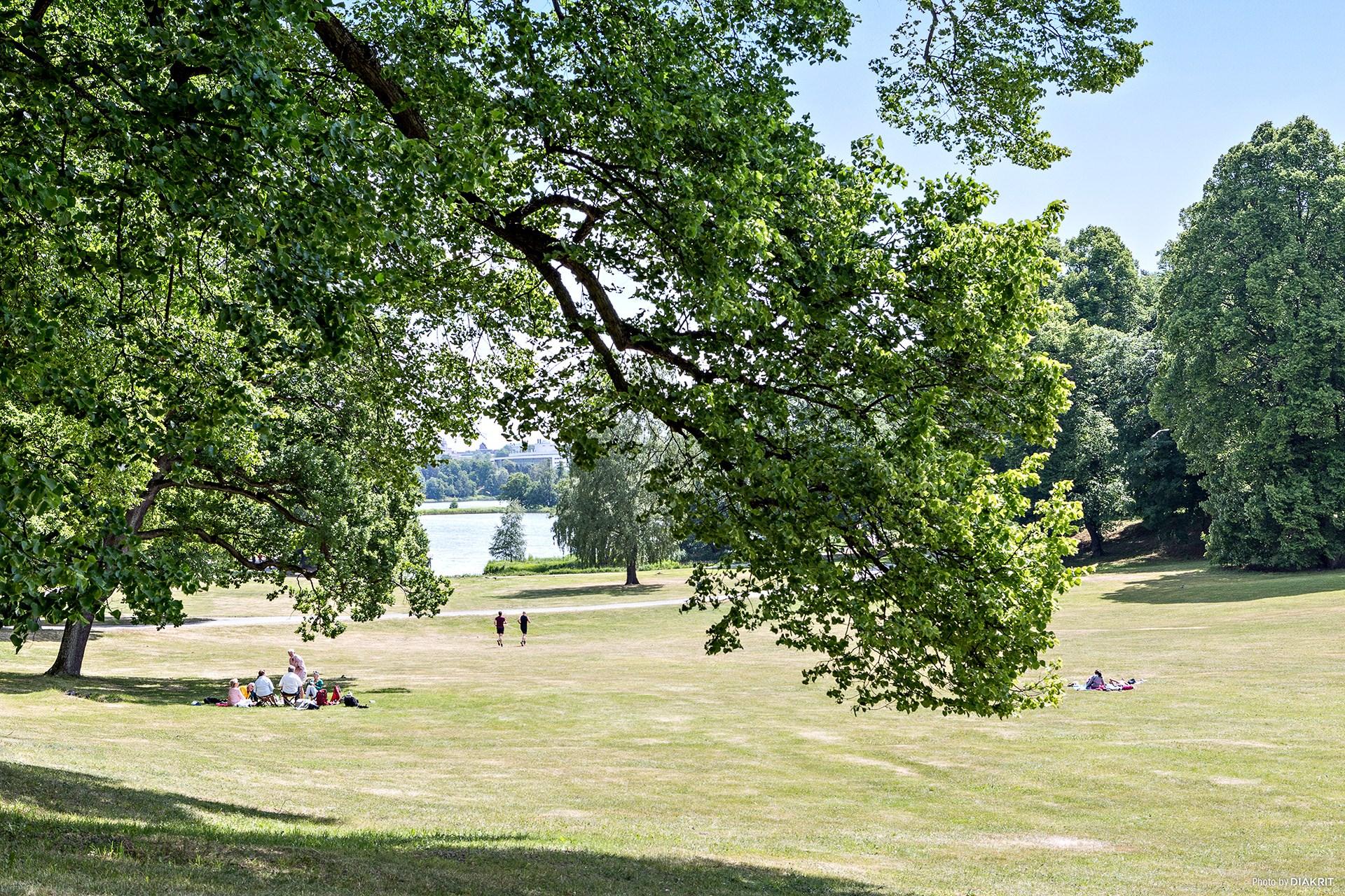 Stockholms härligaste park - Hagaparken!