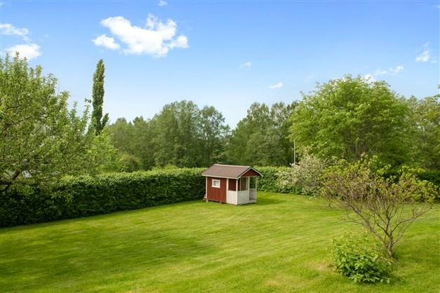 Härlig lekyta i trädgården - utsikt över Smäckens naturreservat