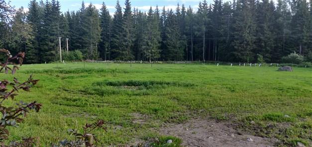 Putsade betesmarker (Säljarens egna bild)