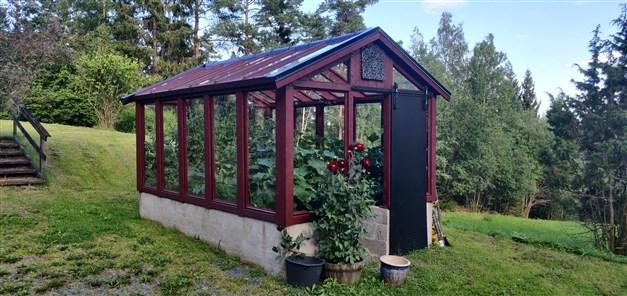 Växthus med prunkande grönska av grönsaksodlingar (Säljarens egna bild)