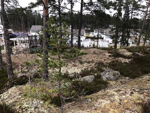 Högt fritt läge med utsikt över Täby trädgårdstad Totalt byggrätt hela 246 kvm byggyta! Utsikt från den västra delen av tomten