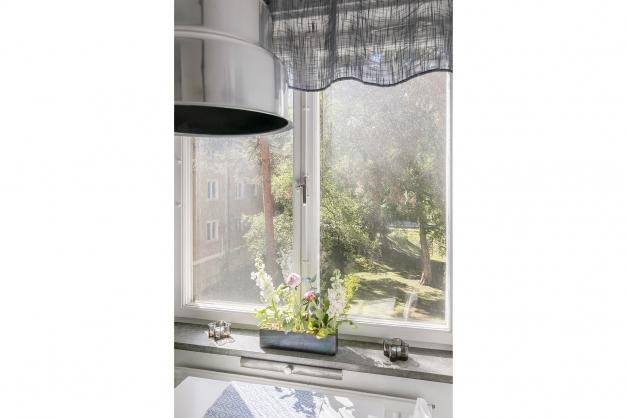 Grön gård utanför fönstret