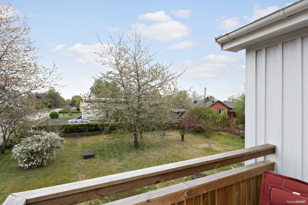 Utsikt över trädgården