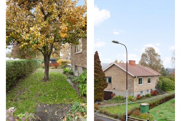Fasad/Trädgård