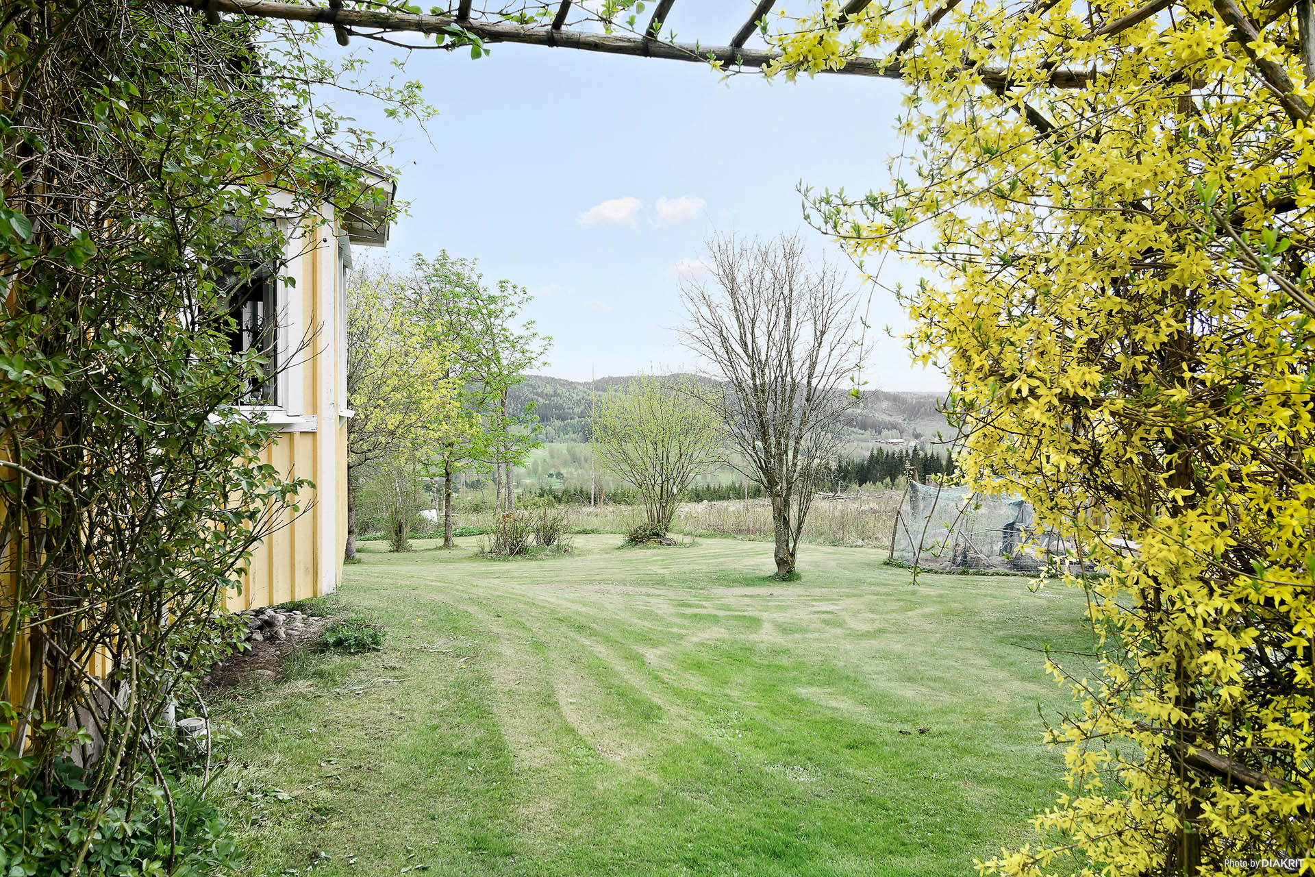 Grönskande trädgård med fin utsikt