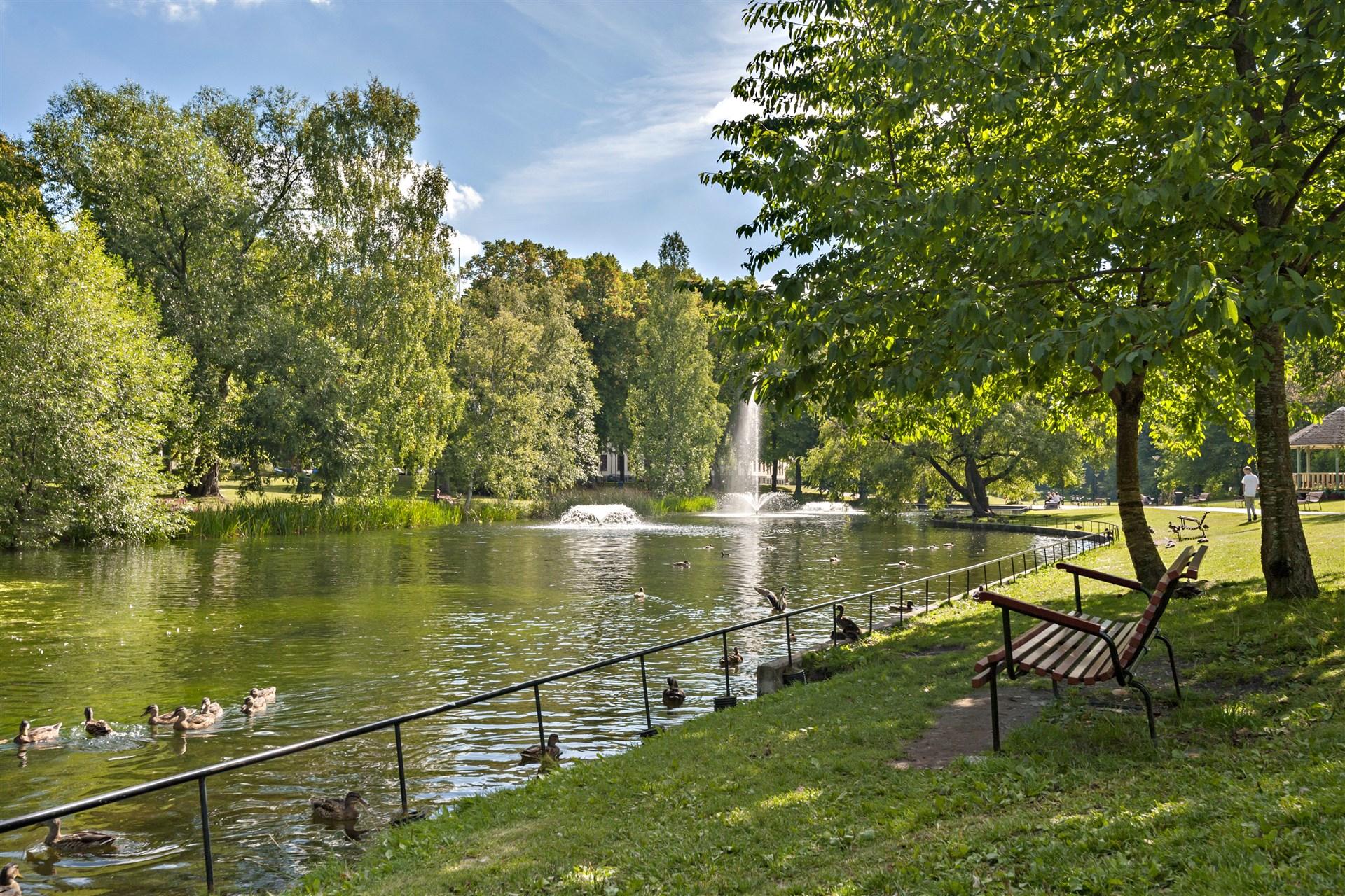 Den vackra dammen i parken