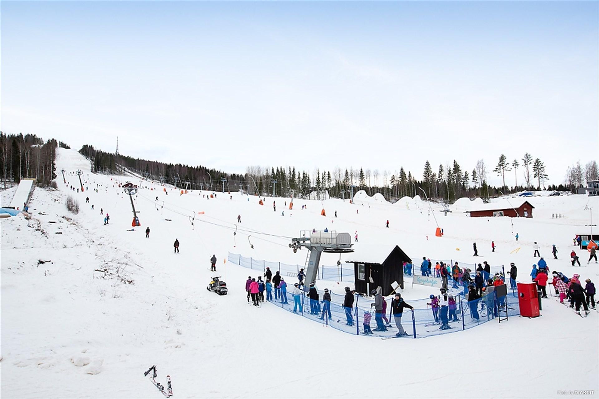 Skidanläggning