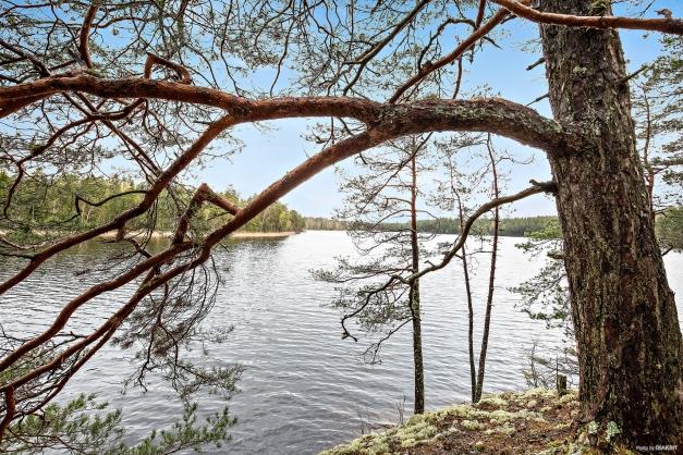 Stora Harsjön