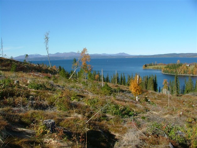 Utsikt höst över Kallsjön mot Skäckerfjällen