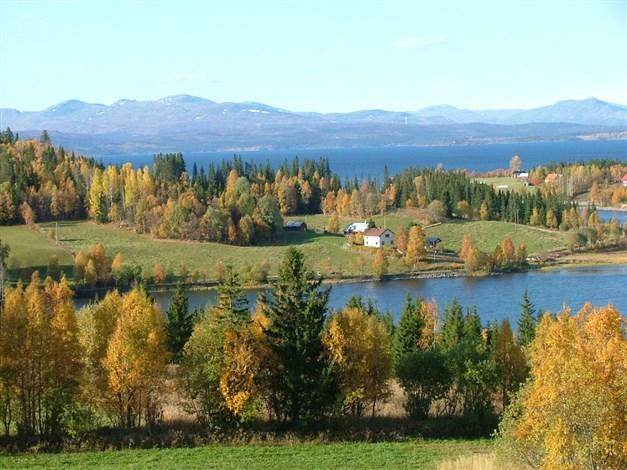 Vy från Skagen över Ytterkonäs