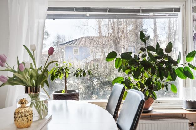 Härligt panoramafönster med utsikt