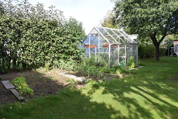 Växthus och trädgårdsland