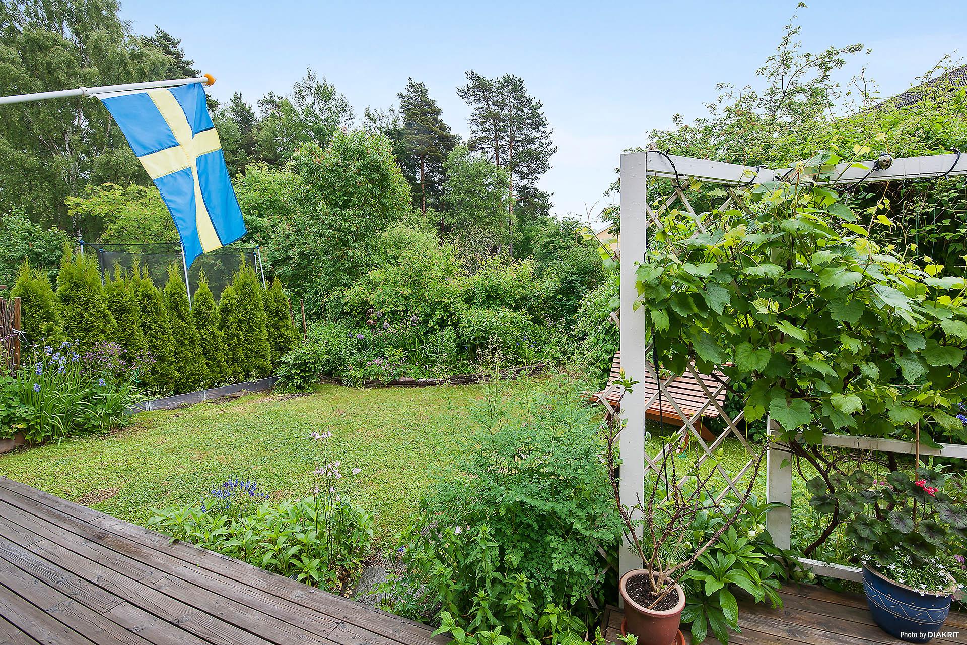 Uppvuxen trädgård ingår med mindre lekplats som gränsar till tomten