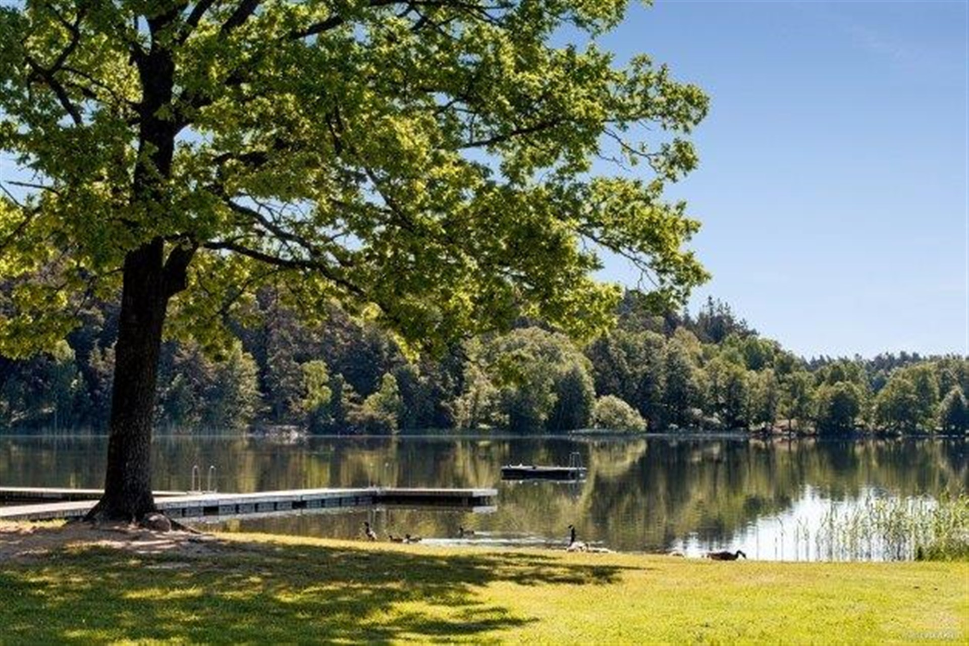 Rönningesjön, 500 meter bort.