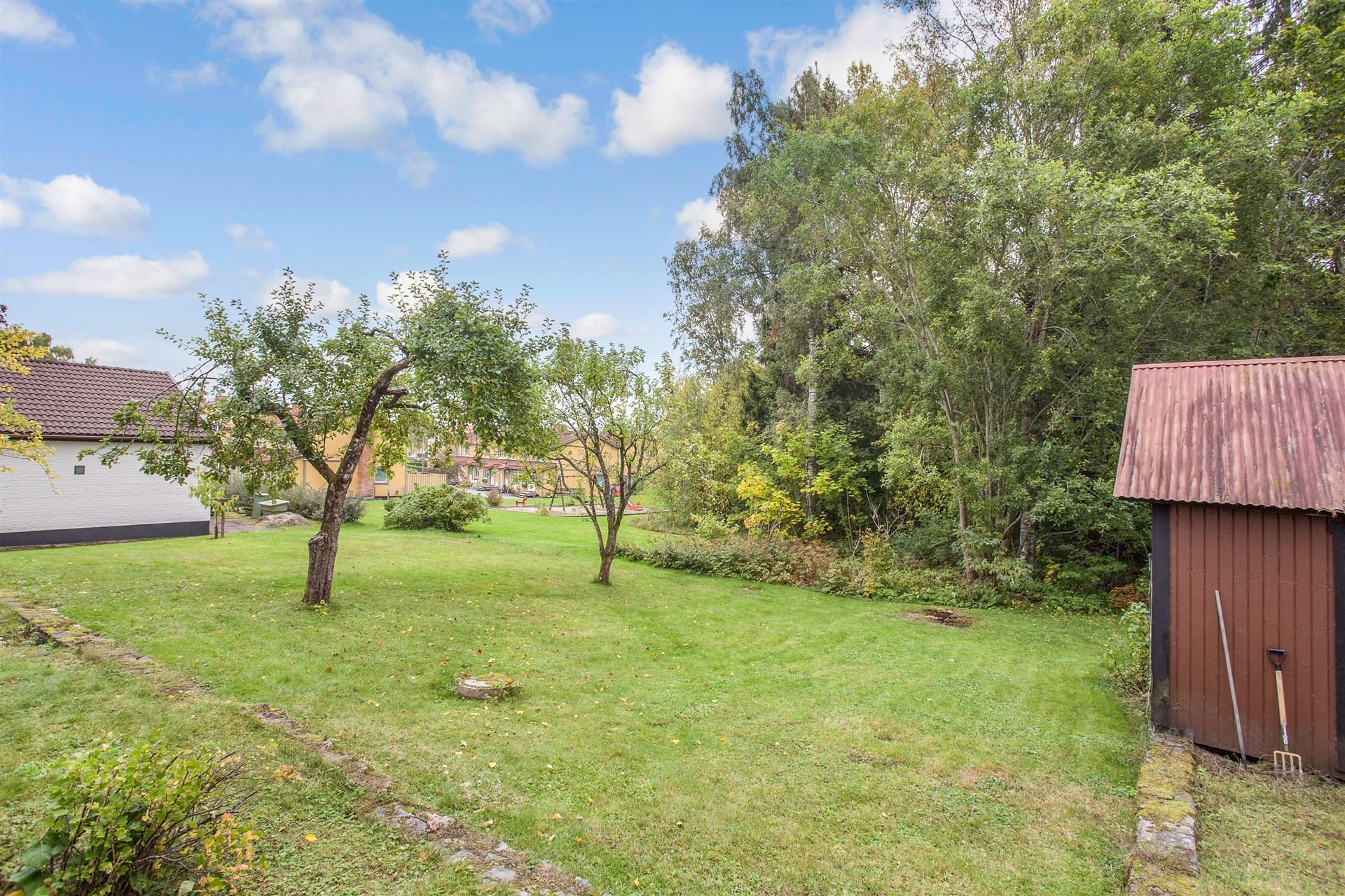 Uppväxt trädgårds- och naturtomt på baksidan.