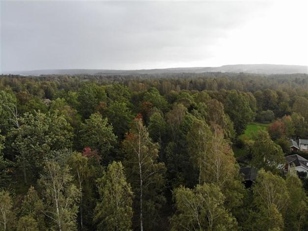 Områdesbild