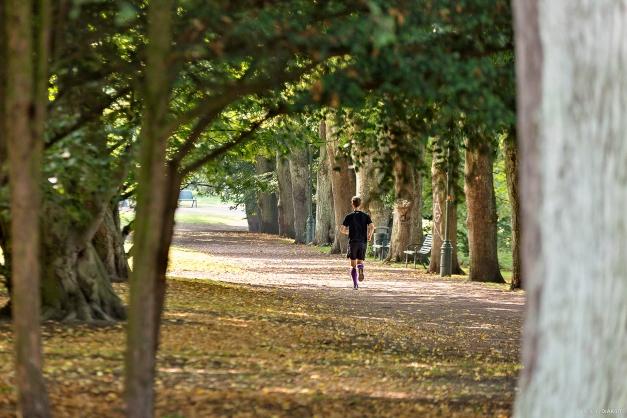 Morgon jogging i Slottsparken