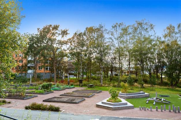 ODLINGSLOTTER - Mycket fint område med odlingslotter utanför