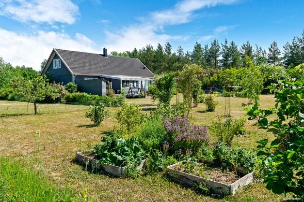 Fin trädgård med odlingsmöjligheter