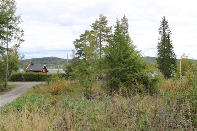Högt läge med utsikt mot Långsjön