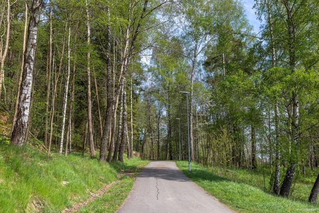 PROMENADSTRÅK - Härligt promenadväg i närheten av tomten