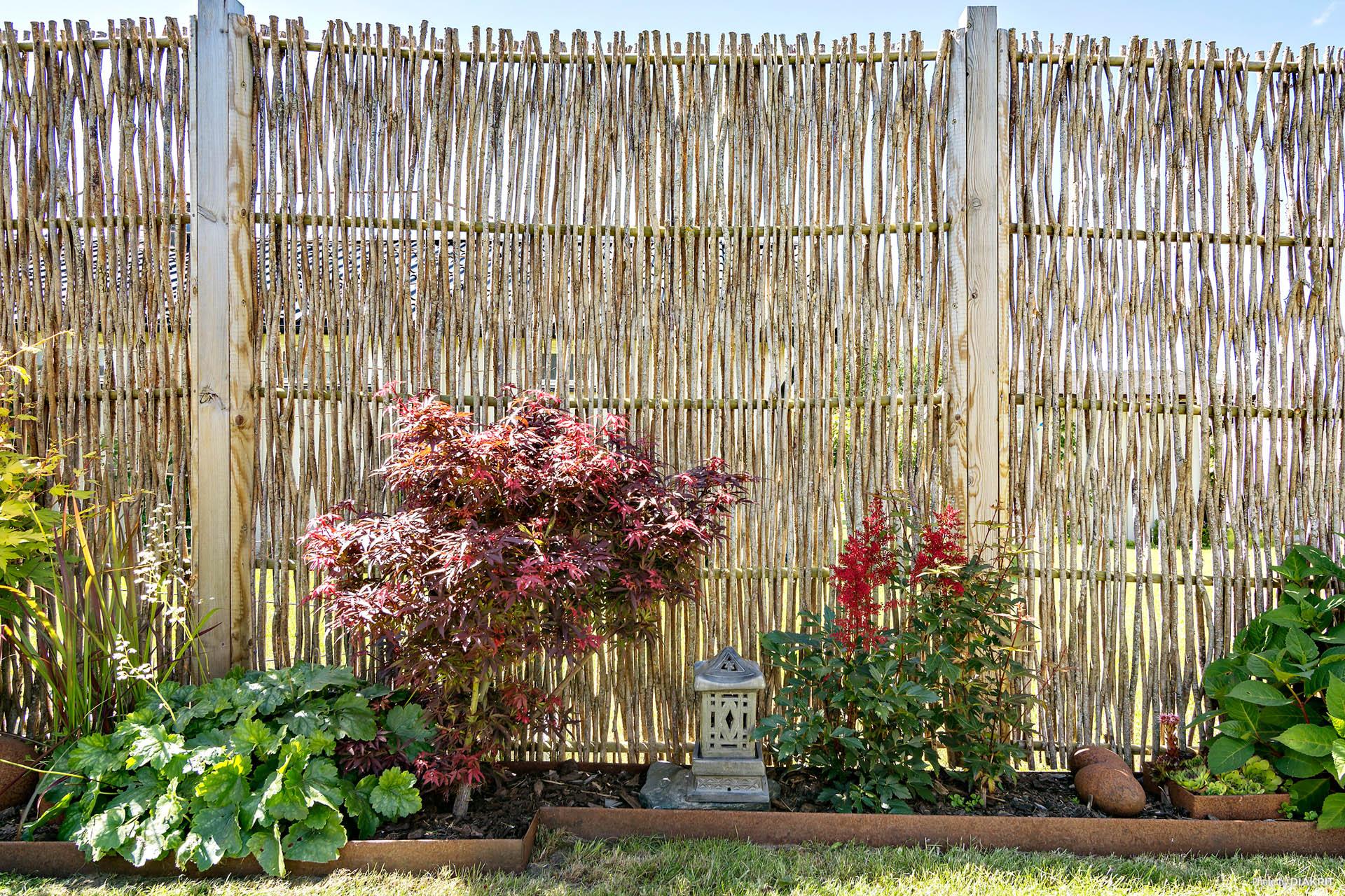 Snyggt anlagt trädgård med fina växter.