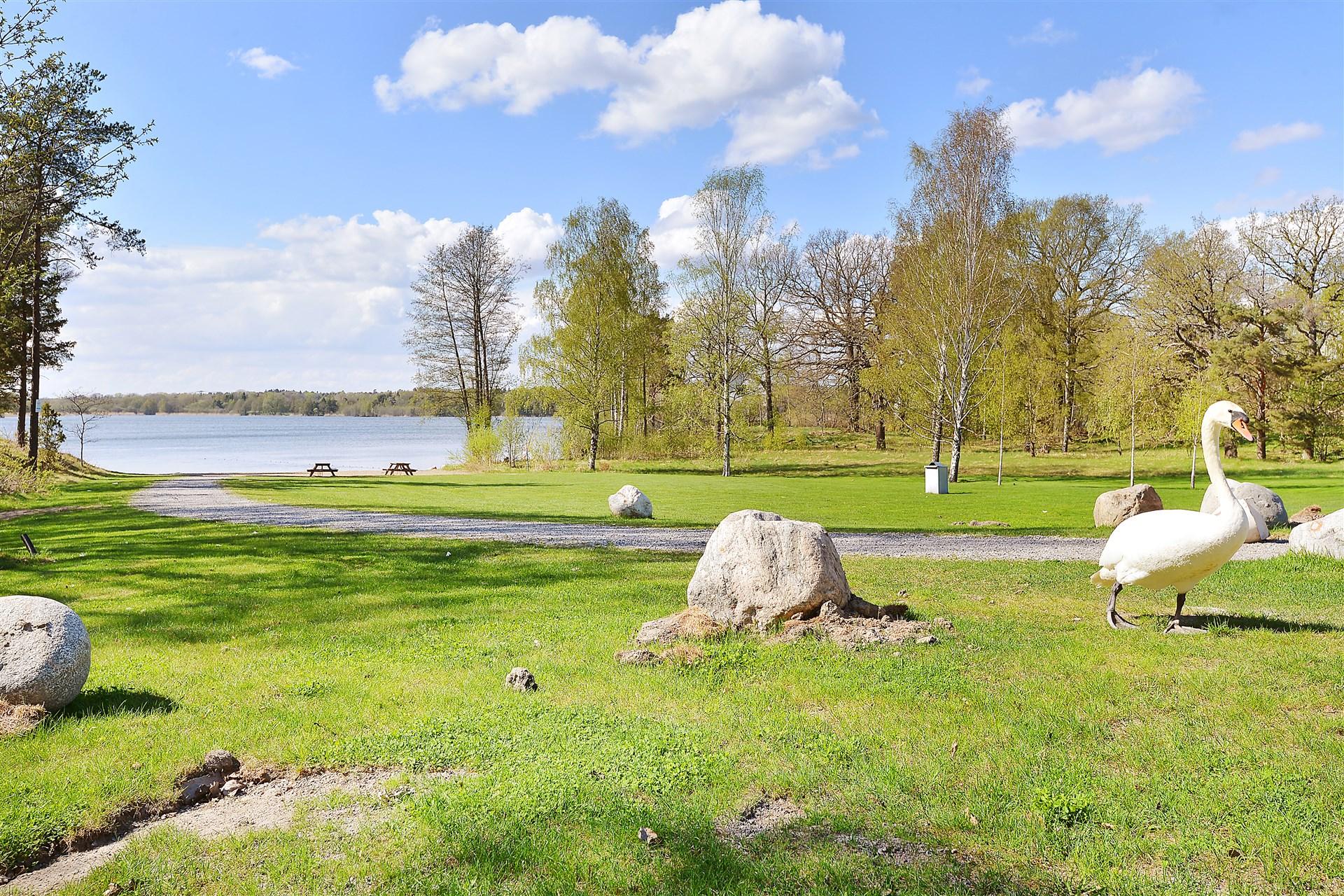 Ältasjön vid Strandparksbadet