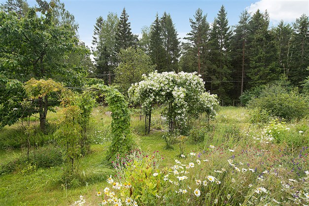 Härlig trädgård