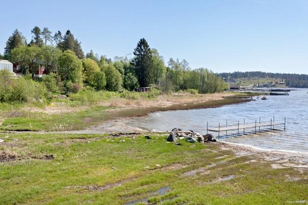 Stranden där servitut kommer finnas för brygga och båtplats