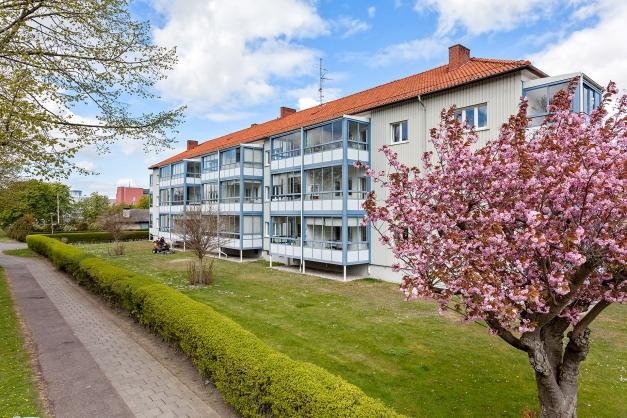 Välkomna till Liljeborgsgatan 33B