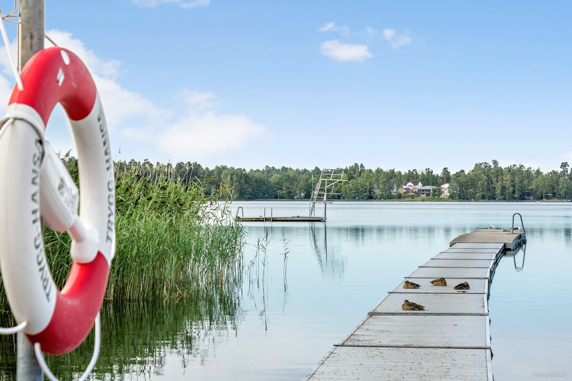 Lillsjöns bad om sommaren