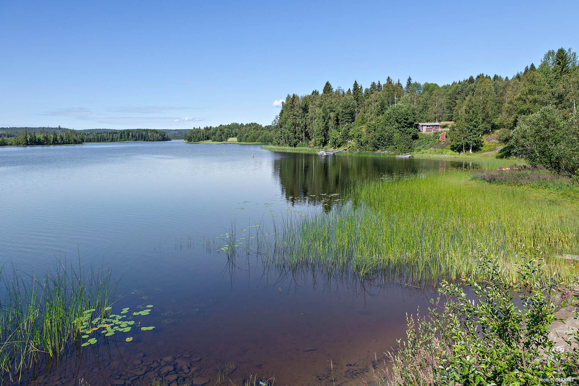 Områdesbild på Långsjön som endast ligger några minuters promenad bort