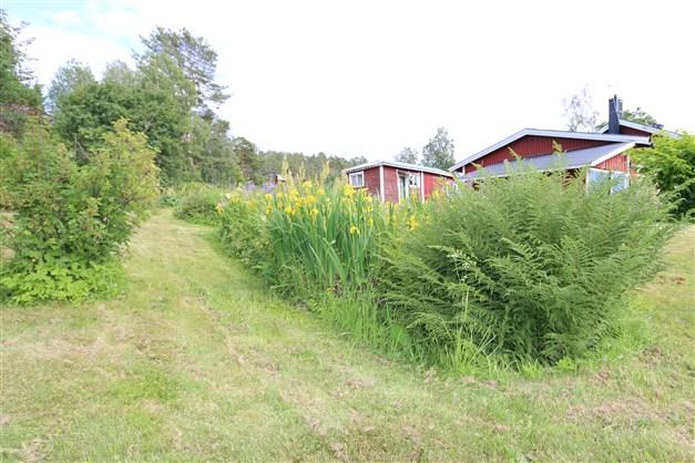 Trädgården är mysig med träd och buskar samt en liten bäck