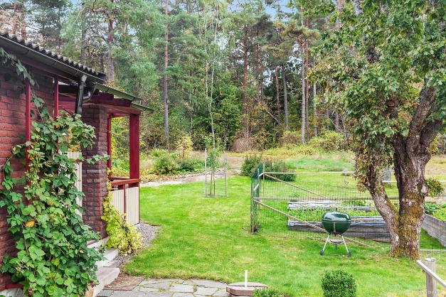 Underbar trädgård utanför husknuten