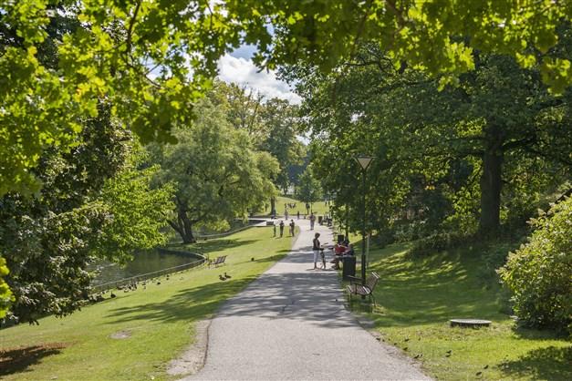 Vackra promenadvägar i parken
