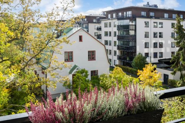 Utsikten från balkongen mot gamla trädgårdsmästarvillan