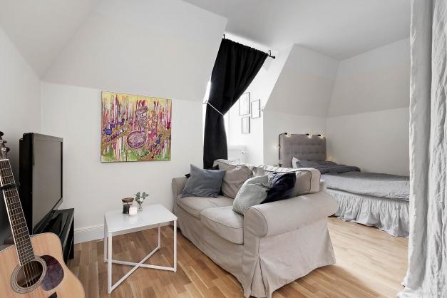 Vardagsrum med soffdel och sovdel